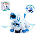 Игрушка-робот «Собака», работает от батареек, световые и звуковые эффекты, танцует, МИКС - фото 105499699