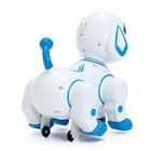 Игрушка-робот «Собака», работает от батареек, световые и звуковые эффекты, танцует, МИКС - фото 105499701