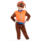 Карнавальный костюм «Зума», куртка, бриджи, маска, р. 28-30, рост 104-110 см