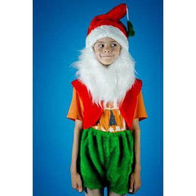 Карнавальный костюм «Гномик», на резинке, рост 104-134 см