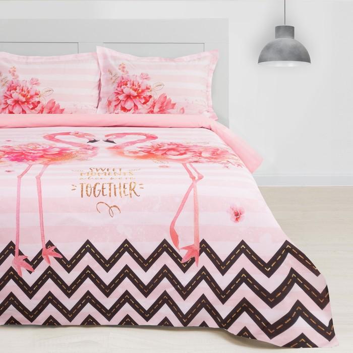 Постельное бельё Этель Flamingo, 1.5-сп., 143 × 215 см, 150 × 214 см, 50 × 70 (+3) см (2 шт.)