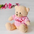 """Мягкая игрушка """"Медведь"""", 20 см, кофточка с надписью, цвета МИКС"""