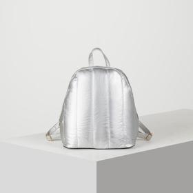 Рюкзак молодёжный, отдел на молнии, цвет перламутр серебро