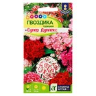 """Семена цветов Гвоздика турецкая """"Супер Дуплекс"""", Дв, цп, 0,1 г"""