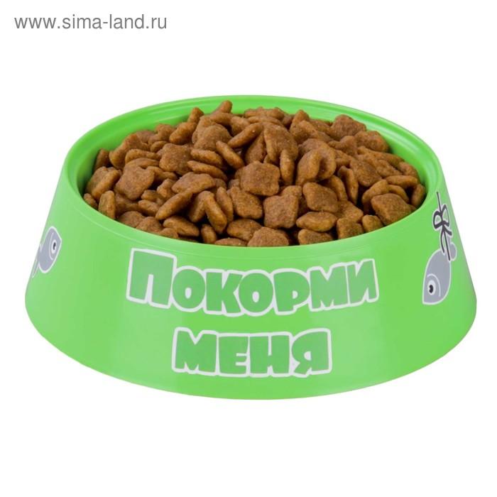 """Миска """"Барсик"""", для кошек, 0,3 л, 14,5 x 14,5 x 4,5 см, зелёный"""