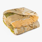 Одеяло Эконом 172х205 см, синтепон, п/э 100%