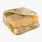 Одеяло Эконом 200х220 см, синтепон, п/э 100%