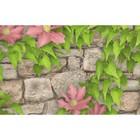 Обои бумажные, моющиеся Брянск Клематис-4 розовые цветы, 0,53x10 м