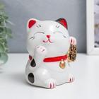 """Piggy Bank ceramic """"Maneki-neko - the character for happiness and success"""" MIX 9,3х7х7 cm"""
