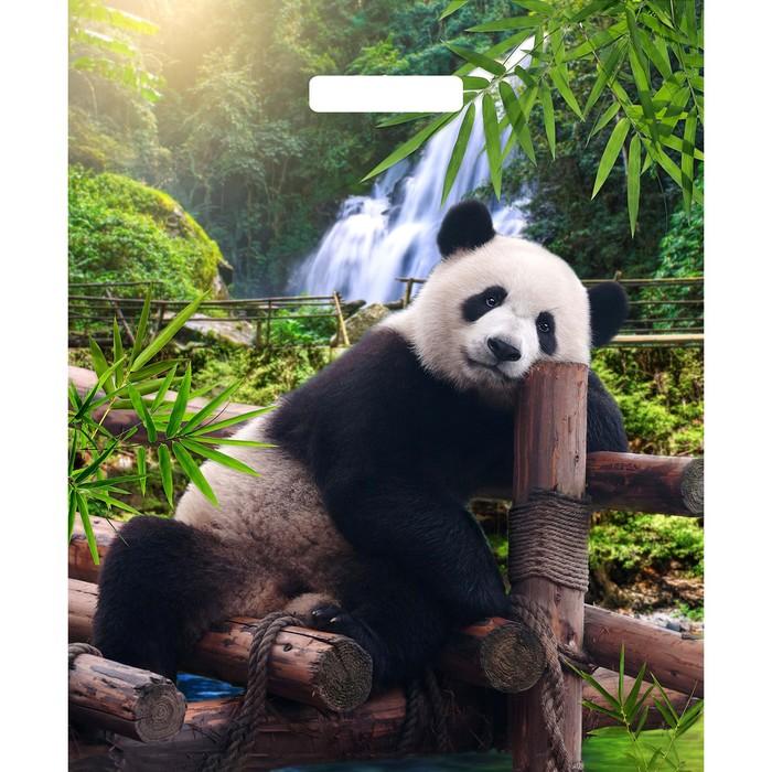 """Пакет """"Задумчивый панда"""", полиэтиленовый с вырубной ручкой, 38 х 45 см, 60 мкм - фото 308983625"""