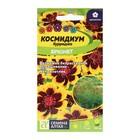 "Семена цветов Космидиум ""Брюнетка"", О, цп, 0,01 г"