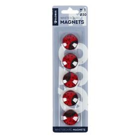 """Магниты для досок 30 мм, 5 штук, """"Божья коровка"""" красные"""