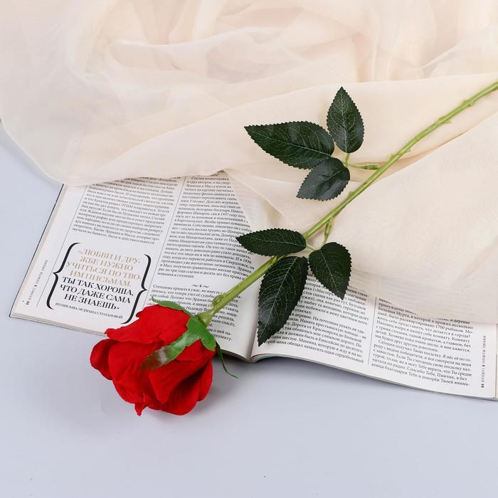 """Цветы искусственные """"Роза бланка"""" 7,5*55 см, красная микс - фото 4456084"""
