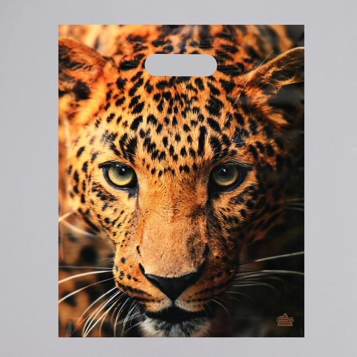 """Пакет """"Взгляд леопарда"""", полиэтиленовый с вырубной ручкой, 31 х 40 см, 60 мкм - фото 308983627"""
