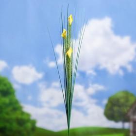 Штекер садовый 'Каллы' 75*2*2 см Ош