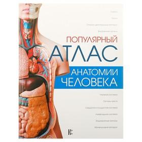 «Популярный атлас анатомии человека», Палычева Л. Н., Лазарев Н. В.