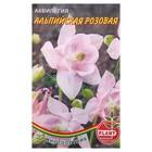 Семена цветов Аквилегия альпийская розовая, Мн, 0,02 г