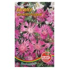 Семена цветов Василек сиренево-розовый, Мн, 0,2 г