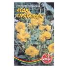 """Семена цветов Гравилат """"Леди Стратхеден"""", Мн, 0,04 г"""