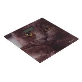 """Весы напольные Sakura SA-5065CT, электронные, ultraslim, до 180 кг, рисунок """"кошка"""""""
