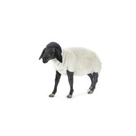Мягкая игрушка «Суффолкская овечка», 65 см в Донецке