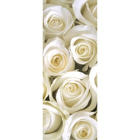 Фотообои «Белые розы» (из 1 листа), 2,7х1,05 м Ош