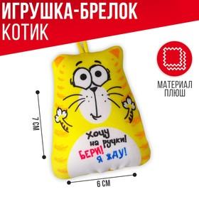 """Anti stress toy - keychain """"I Want pen!"""" 6*7cm"""