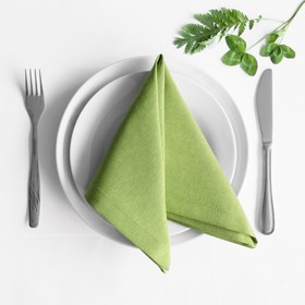Комплект салфеток «Билли», размер 38 х 38 см - 4 шт, травяной