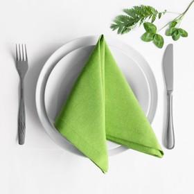 Комплект салфеток «Билли», размер 38 х 38 см - 4 шт, зелёный