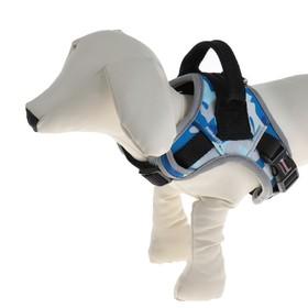 Шлейка Dogness Camo, XS/S, ОШ 24-32 см, ОГ 32-52 см, стропа 2 см, до 12 кг, синий