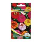 Семена цветов Цинния изящная карликовая смесь, О, 0,3 г
