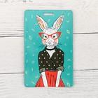 Чехол для бейджа и карточек «Крольчиха», 6,8 х 10,5 см