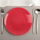 Тарелка 24 см гладкая, цвет красный