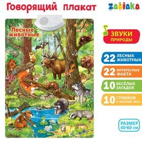 Говорящий электронный плакат «Лесные животные», работает от батареек
