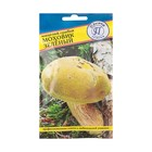 Мицелий грибов Моховик зелёный, 60 мл