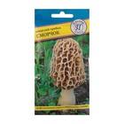 Мицелий грибов Сморчок, 60 мл