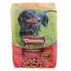 Сухой корм Chammy для собак мелких пород, говядина, 600 г - фото 2298807