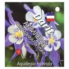 """Семена цветов Аквилегия гибридная """"Голубка"""", Мн, 0,1 г"""