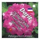 "Семена цветов Пеларгония ""Ринго 2000"" F1 Дип Роуз, Мн, DARIT  4 шт"
