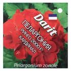 """Семена цветов Пеларгония """"Ринго 2000"""" F1 Кардинал, Мн,DARIT   4 шт"""
