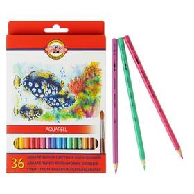 Карандаши акварельные Koh-I-Noor Fish 3719/36, 36 цветов, картонная коробка, европодвес