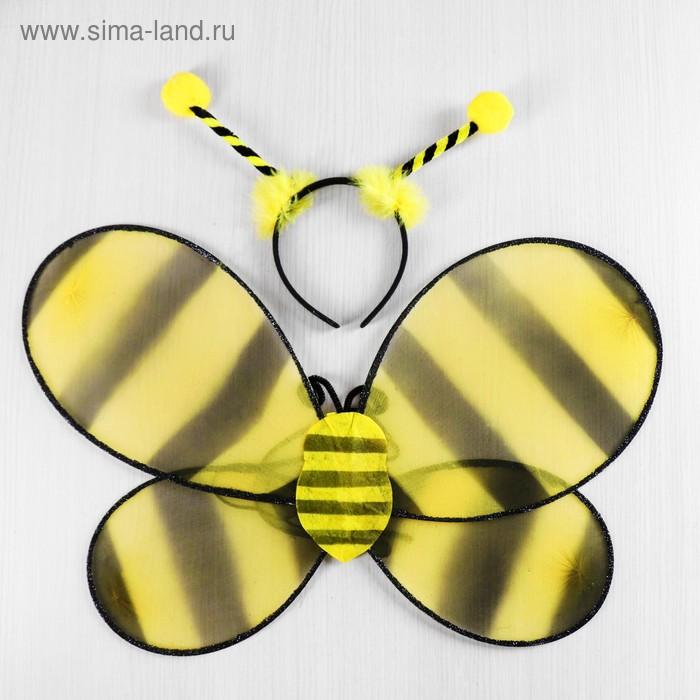 "Carnival set ""Bee"" 2 pieces: headband, wings"