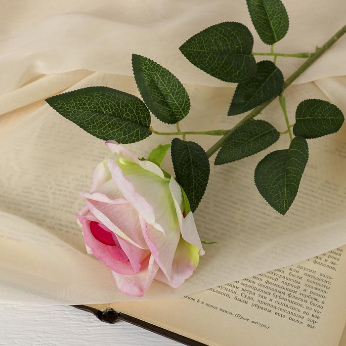 """Цветы искусственные """"Роза боливийская"""" 7,5*55 см, розовая - фото 4456113"""
