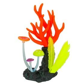 Флуоресцентная аквариумная декорация Gloxy, морские кораллы розовые, 14х6,5х21 см