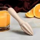 Соковыжималка для цитрусовых, деревянная, ручная, 16 х 4 см, массив бука - фото 308028276