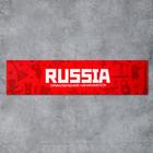"Шкурка для скейтборда ""Russia"", 22,8 х 83 см"