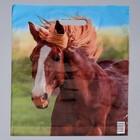 """Пакет """"Конь"""", полиэтиленовый с вырубной ручкой, 38 х 45 см, 45 мкм"""