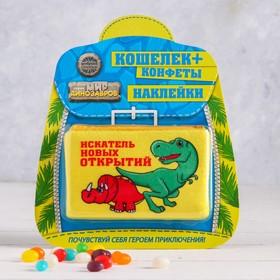 Подарочный набор «Искателю новых открытий»: кошелёк, наклейки, конфеты 20 г