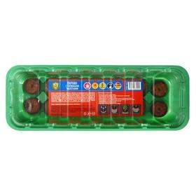 Набор мини-теплиц с торфяными таблетками (24 × 12 × 5 см), 14 шт.