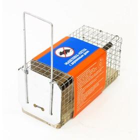 Мышеловка-клетка, 12 × 5 × 6 см, с деревянным дном